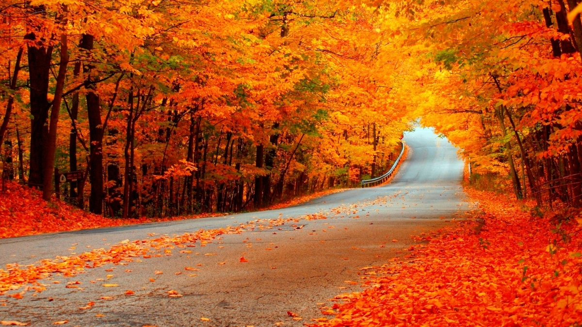 Fall Dates &Beyond!